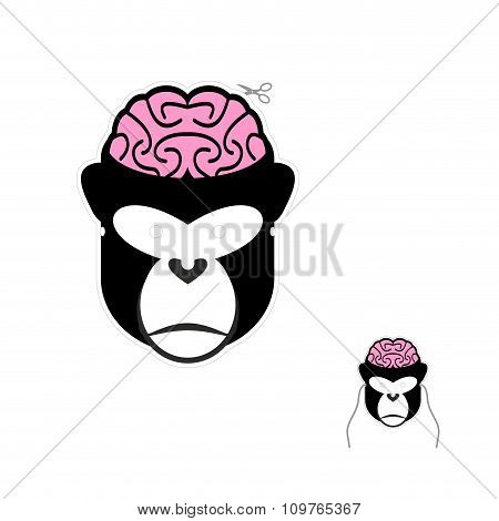 Monkey With Brains Carnival Mask. Funny Mask For Christmas And New Year.