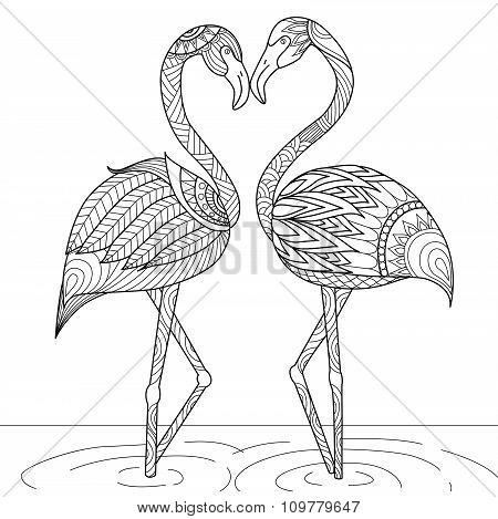 Flamingo For Coloring Book