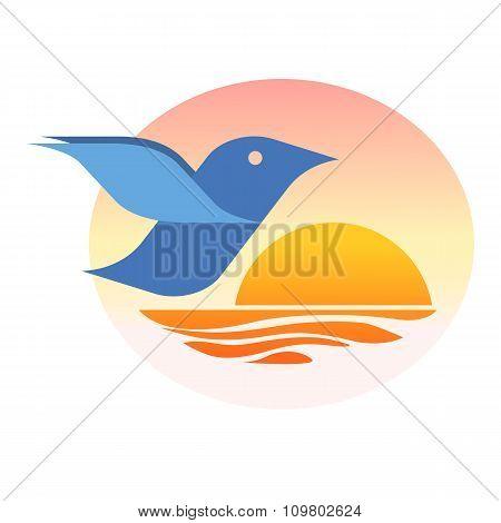 Birdie at sunset