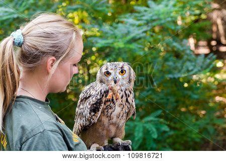 Bird Show In Szeged Zoo