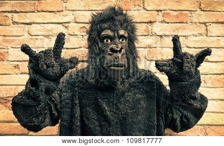 Funny Fake Gorilla With Rock And Roll Hand Gesture - Hipster Concept Of Anthropomorphic Evolution