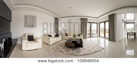 Spacious Minimalistic Living Room
