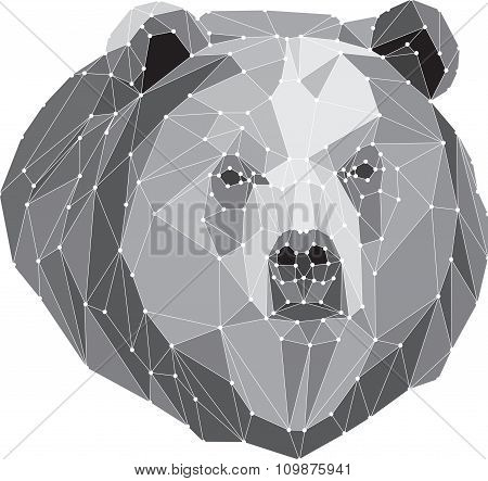 gray bear portrait. Abstract low poly design