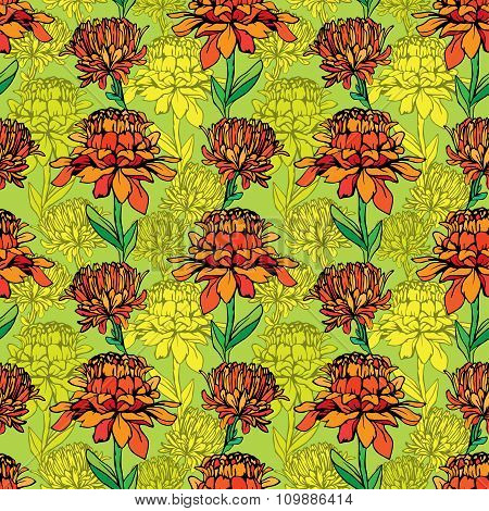 Seamless Pattern With Realistic Graphic Flowers - Daisyes - Hand Drawn Background.