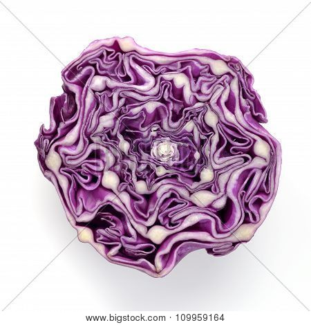 Red Cabbage - Top View