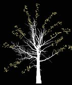 tree with mathematical equations isolated on black background illustration poster