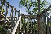 Wooden stairs of birwatching tower on brazilian atlantic rainforest. poster