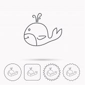 Whale icon. Largest mammal animal sign. Baleen whale with fountain symbol. Linear circle, square and star buttons with icons. poster