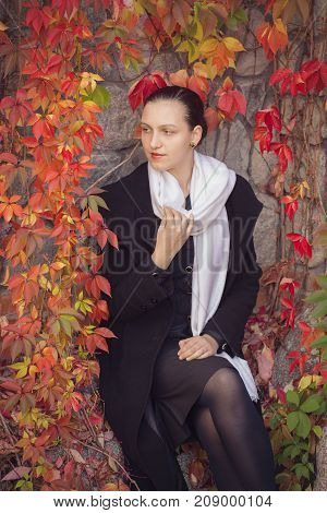 happy young woman sitting near rural wall with autumn red leaves, smiling