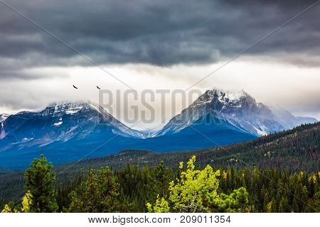 The concept of active tourism. The astonishing nature of the Rockies of Canada. The snow-capped mountains