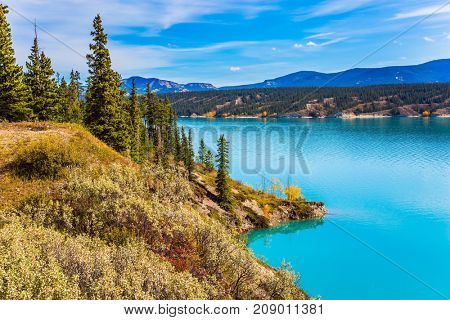 Warm sunny day in autumn. Indian summer in Canada. Abraham Lake is the most beautiful lake in the Rockies. The concept of ecological and active tourism