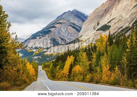 Yellow and evergreen forests along the road 93. Powerful granite rocky mountains of Canada. The concept of active and automobile tourism