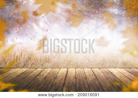 Image Of Autumn Scenery