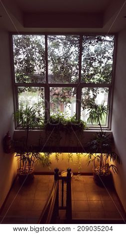 Large window inside the building has decorated with plenty of tiny flowers