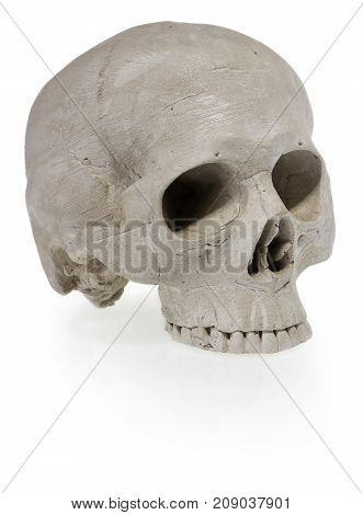 Halloween Human Skull. Scary Skeleton Head.
