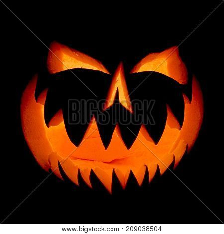 Halloween Pumpkin Face Ghost Glowing In The Dark.