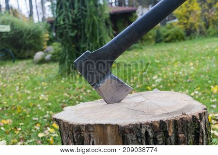 Axe in stump. Axe ready for cutting timber.Woodworking tool. Lumberjack axe in wood chopping timber. Travel adventure camping gear outdoors items