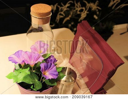 Purple Morning Glory Flowers The Dinner Table for Home and Building Decoration.