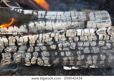 The flame on the smoldering firewood in the hearth.