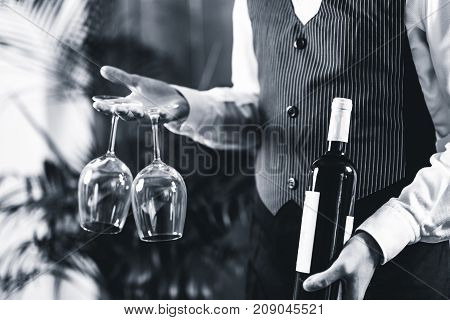 Sommelier holding wine bottle and wine glasses black and white image