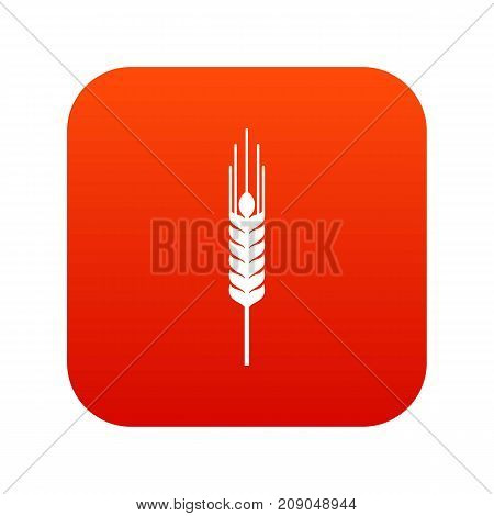Stalk of ripe barley icon digital red for any design isolated on white vector illustration