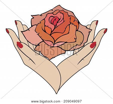 Vector rose in female hands the concept care of skin