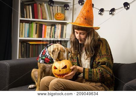 Girl in halloween hat sits with curious dog who sticks its nose into jack'o'lantern. Young female person and her puppy interested in carved pumpkin indoors in living room