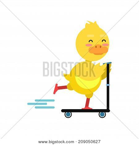 Funny little yellow duckling riding kick scooters cartoon character vector illustration isolated on a white background