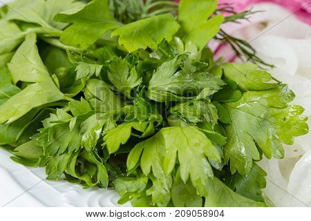 Green parsley and red onion on white plate