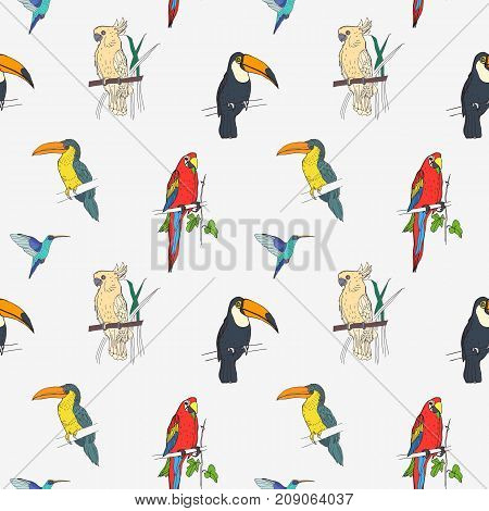 Beautiful tropical seamless pattern with different exotic birds sitting on tree branches and flying on white background. Colorful vector illustration for wallpaper, fabric print, wrapping paper