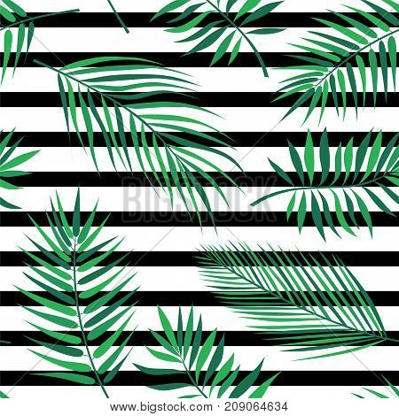 Tropical palm leaves - seamless modern material design pattern on striped white and black background. Exotic branches from rainforest. Template for wrapping paper, fabric, cover, textile, business cards