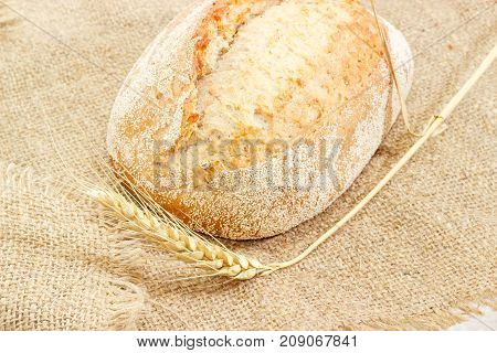 Fragment of the whole loaf of the wheat sourdough hearth bread with bran and ear of ripe wheat on a sackcloth closeup