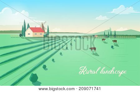 Spectacular rural landscape with farm building, windmill, cows grazing in green field against beautiful sky on background. Beautiful pastoral scenery with domestic cattle. Colored vector illustration