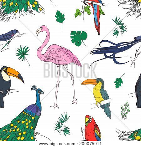 Beautiful colored seamless pattern with tropical birds and exotic leaves hand drawn on white background. Colorful vector illustration for wallpaper, fabric print, wrapping paper
