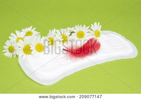 Chamomiles on the sanitary menstrual daily pads. Feminine hygiene products. Personal care, woman hygiene conception photo. Soft tender protection for critical days, blood period, menstruation cycle