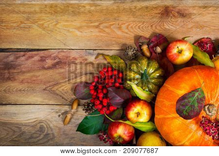 Thanksgiving Background With Orange Pumpkin, Green Squash, Copy Space.