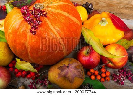 Fall Background With Orange Pumpkin, Yellow Squash, Pear