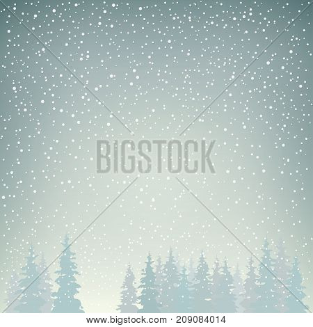 Snowfall in the Forest Snow Falls on the Spruces Fir Trees in Winter in Snowfall Winter Background Christmas Winter Landscape in Gray Shades