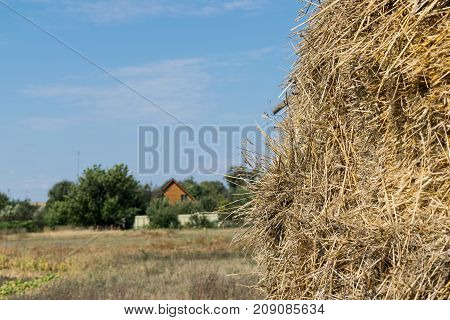 Pile of straw in the village after harvesting