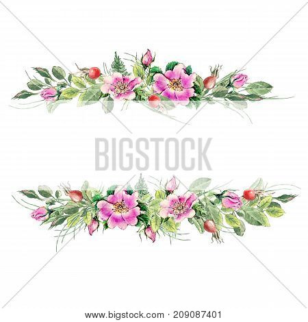 Banner With Flowering Pink Roses Names: Dog Rose, Rosa Canina, Japanese Rose, Rosa Rugosa, Sweet Bri