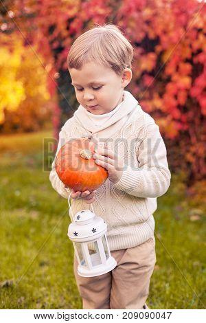 A Cute Little Boy Of 3 Years Walks In The Autumn Park. The Boy Is Holding A Pumpkin. Warm Autumn. Re