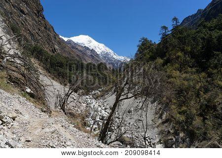 Nepal Trekking In Langtang Valley