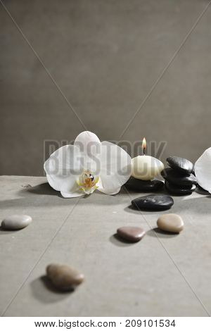 Macro of orchid with gray stones and black stones on gray background