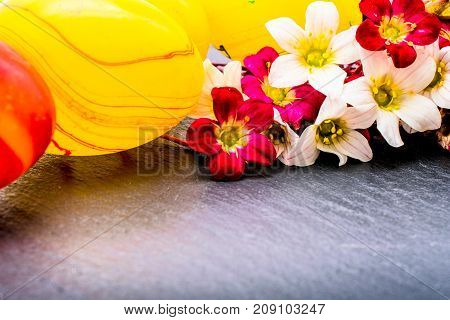 close-up of colorful easter eggs and saxifraga bryoides or mossy saxifrage flowers on stone background with copy space. border template, easter greeting and holiday card.