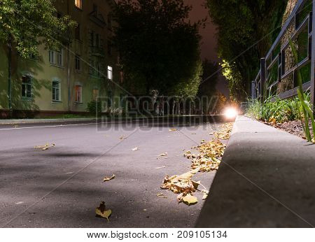 fallen dry autumn yellow leaves night street in autumn in europe small town night lamps