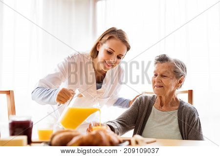 Health visitor and a senior woman during home visit. A nurse pouring orange juice to and an elderly woman. poster