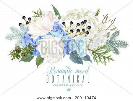 Vector floral composition with blue hydrongea, tulip flowers, conifer branches on white. Romantic winter design for christmas, new year. Can be used for greeting card, party invitation, holiday sale