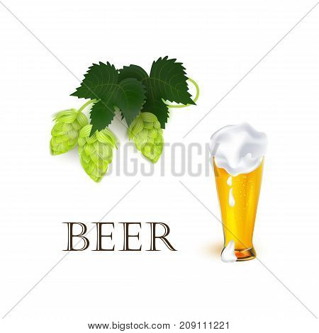 vector realistic full glass of golden lager cool beer with thick white foam mockup and green hop cones, leaves. Ready for your design product packaging. Isolated illustration on a white background.