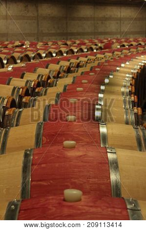 Wine cellar with red wine aging in wooden barrels