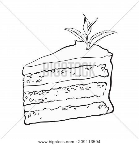 Hand drawn black and white contour piece of matcha tea layered cake, sketch style vector illustration isolated on white background.